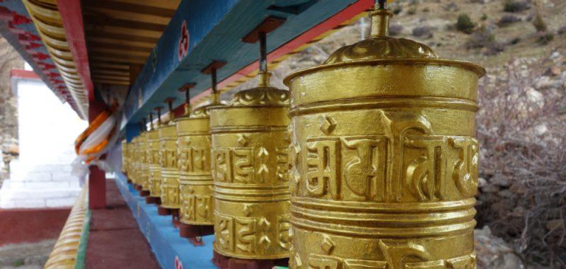 Tag 11: Manang – Yak Kharka