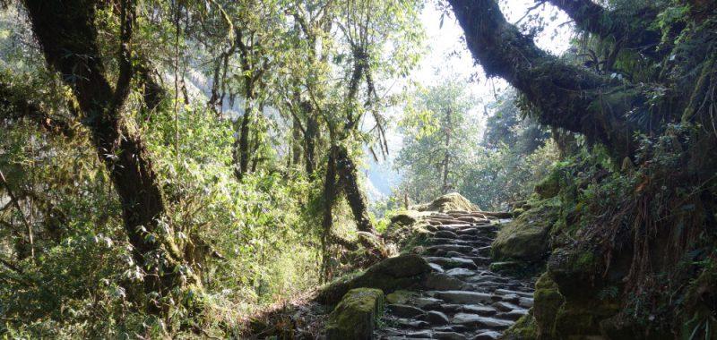 Tag 19: Ghorepani – Tikedungha