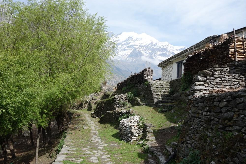 Auf dem Weg nach Ghasa! - Wie aus dem Bilderbuch.