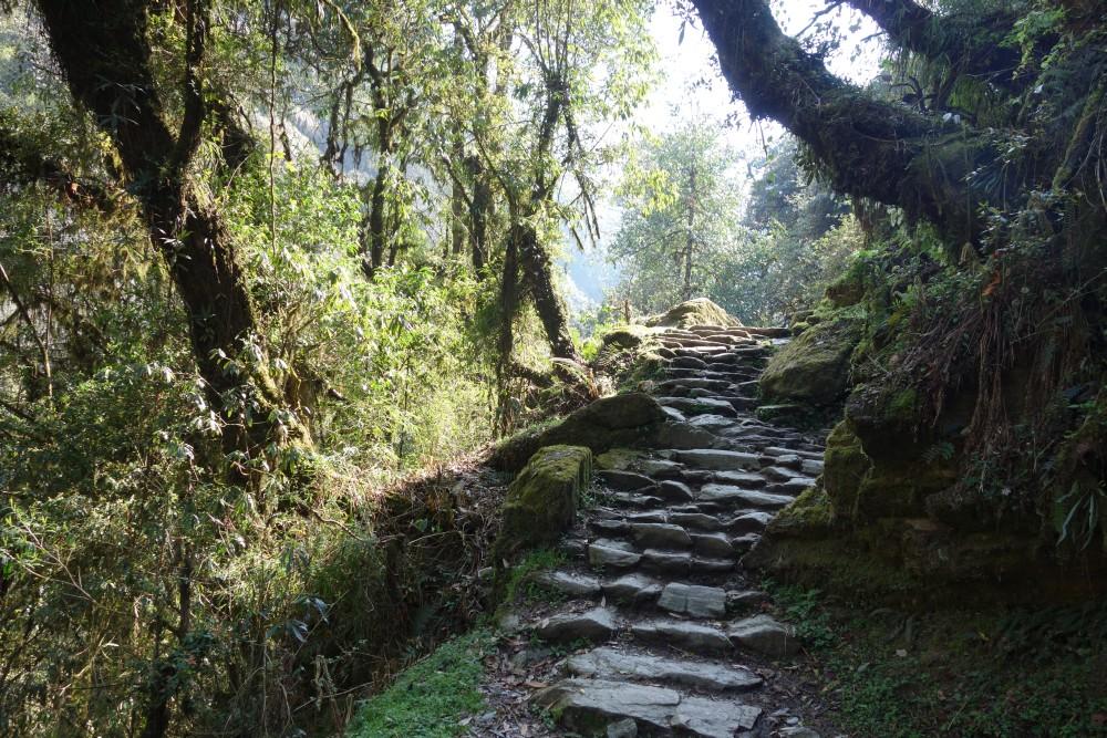 Auf dem Weg nach Tikedungha
