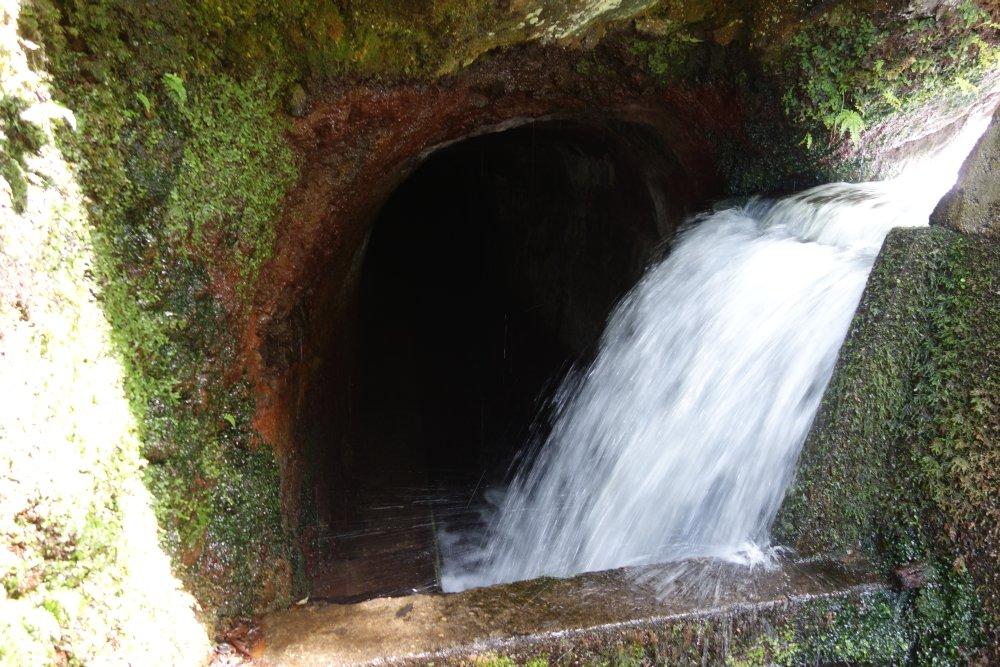 PR17 Caminho do Pináculo e Folhadal - Levadatunnel