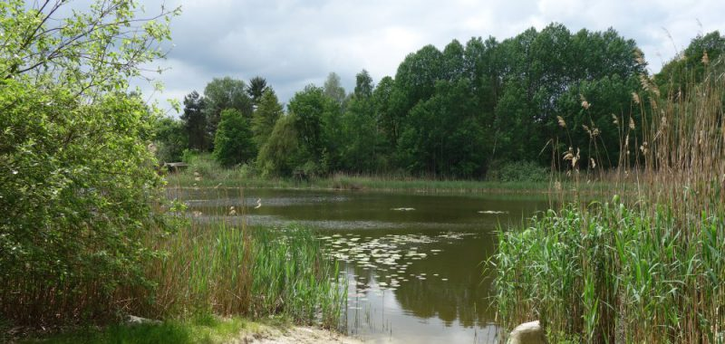 Tag 1: Falkenberg (Mark) – Haselberger Heide
