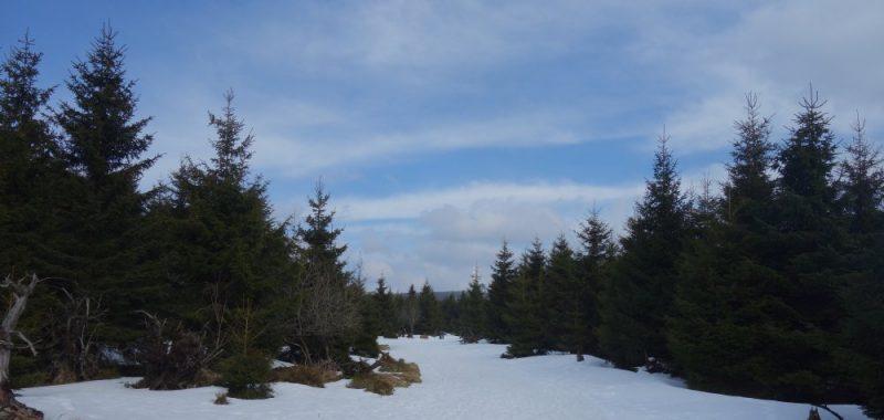 Tag 2 (2/2): Torfhaus – Brocken – Drei Annen Hohne
