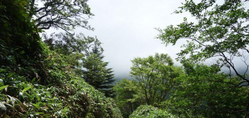 Tag 3: Besteigung des Berges Ishizuchi