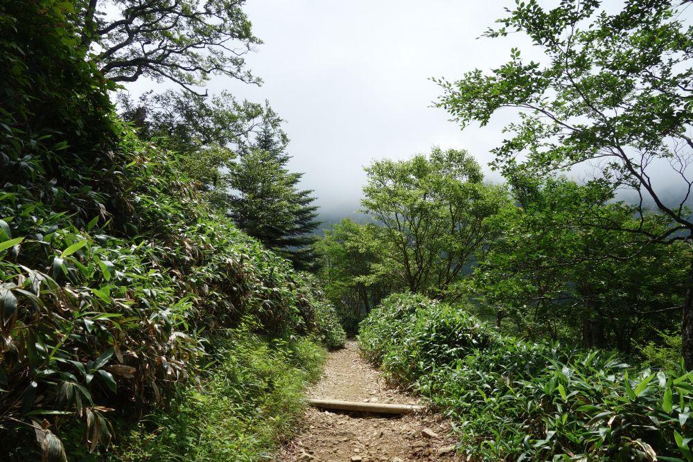 Wanderweg zum Berg Ishizuchi