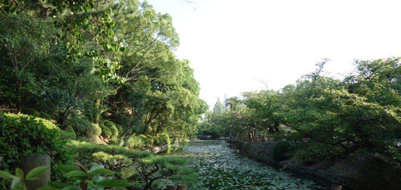 Tag 5: Dôgo Onsen & Park und Isaniwa Schrein