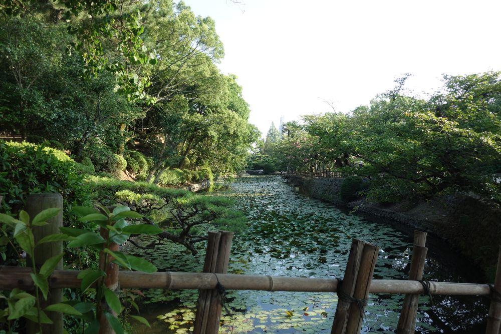 Dôgo Park