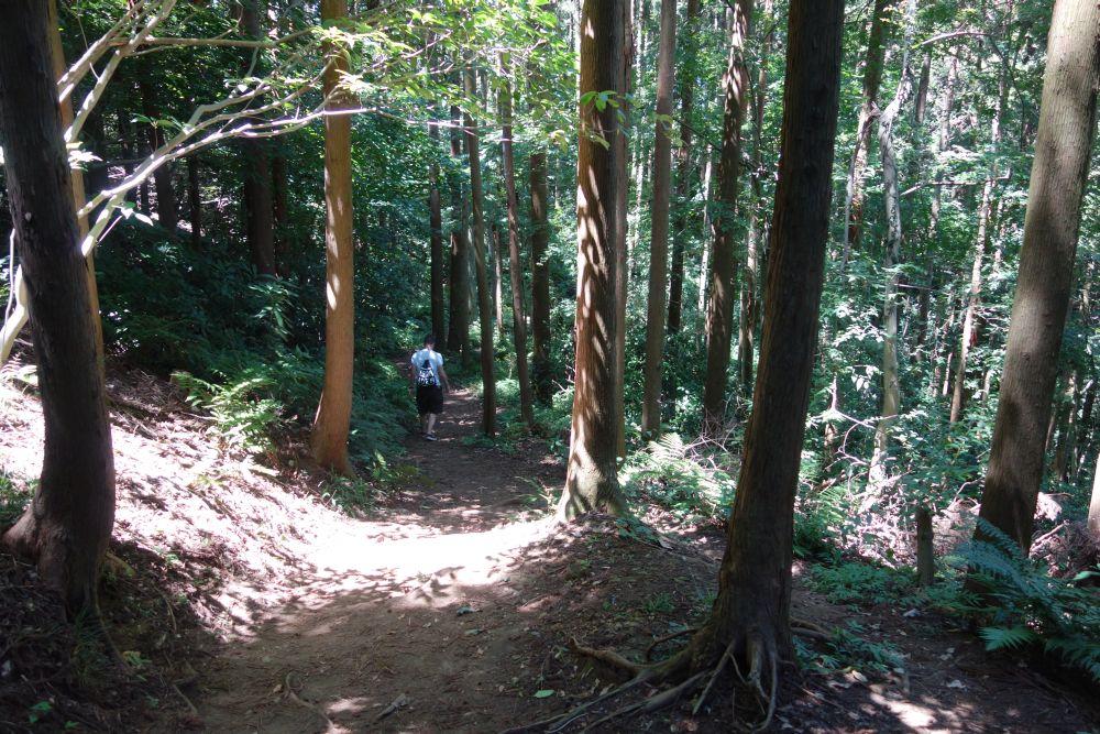 Wanderweg durch Kamakura