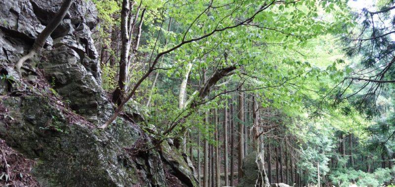 Tag 26: Besteigung der Berge Otsuka, Mitake, Hinode