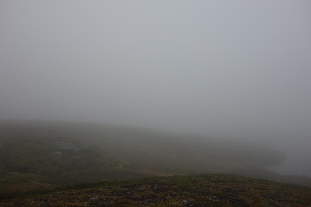 Nebel wohin das Auge reicht